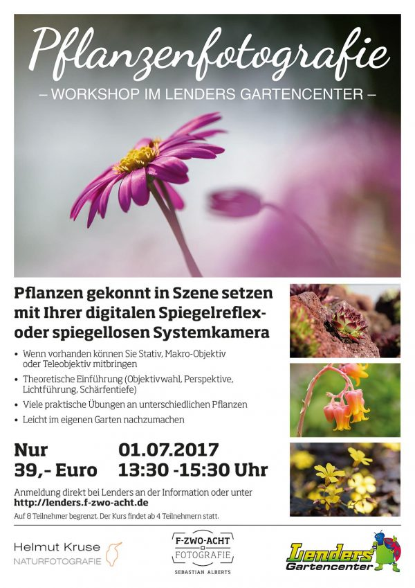 Fotoworkshops Pflanzenfotografie