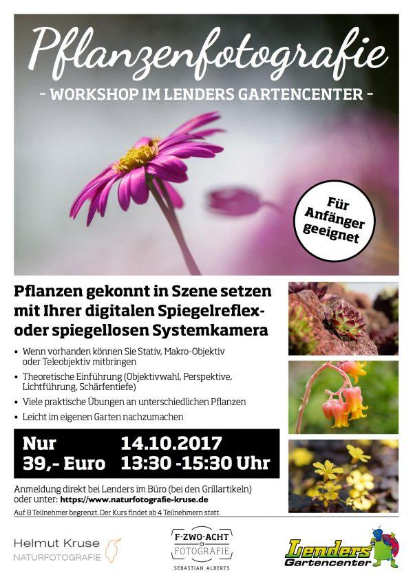 Foto-Workshop Pflanzenfotografie
