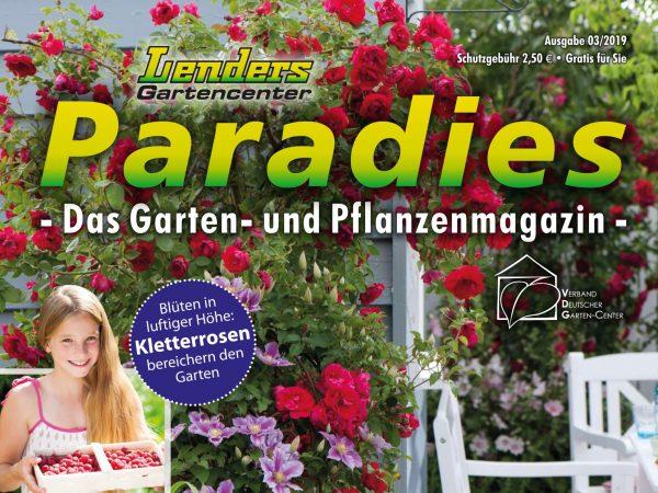 Lenders Paradies ist eingetroffen
